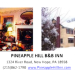 Congrats-Pinapple-Hill-Inn
